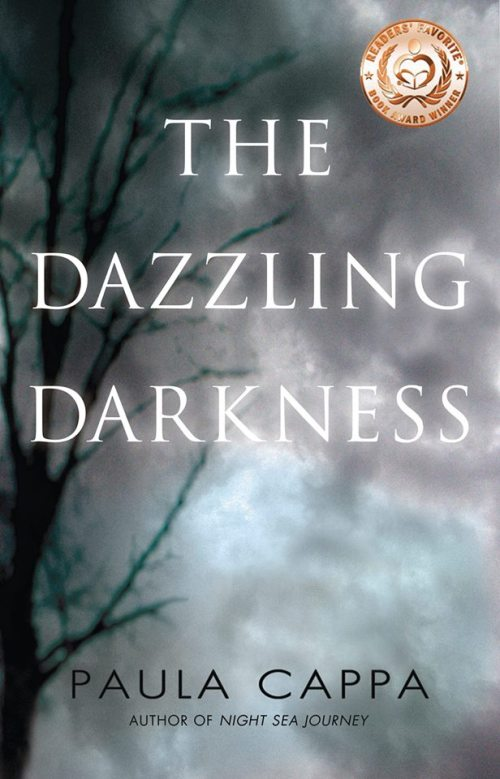 TheDazzlingDarkness_PaulaCappa